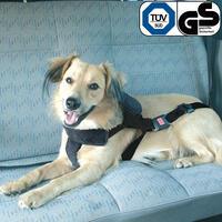 hund im auto auf reise ins ferienhaus ferien mit hund. Black Bedroom Furniture Sets. Home Design Ideas